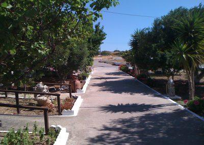 Scarpantos Studios's garden
