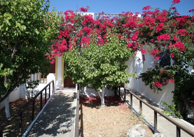 Flowery Skarpantos Studios